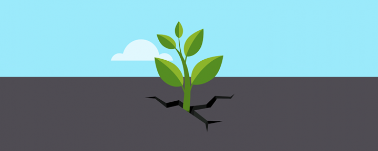 The 5-Minute Guide to Organic Lead Generation